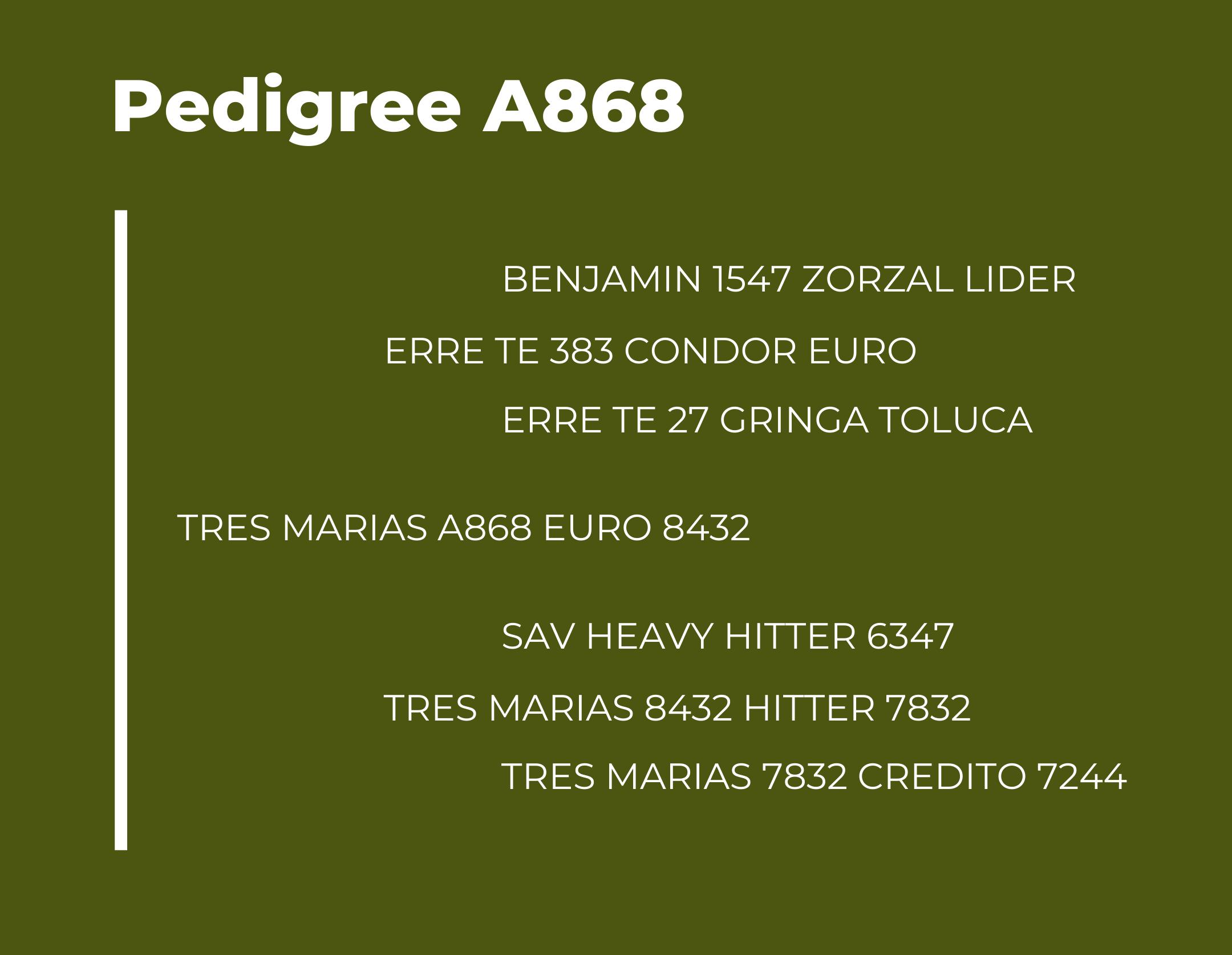 TM A868