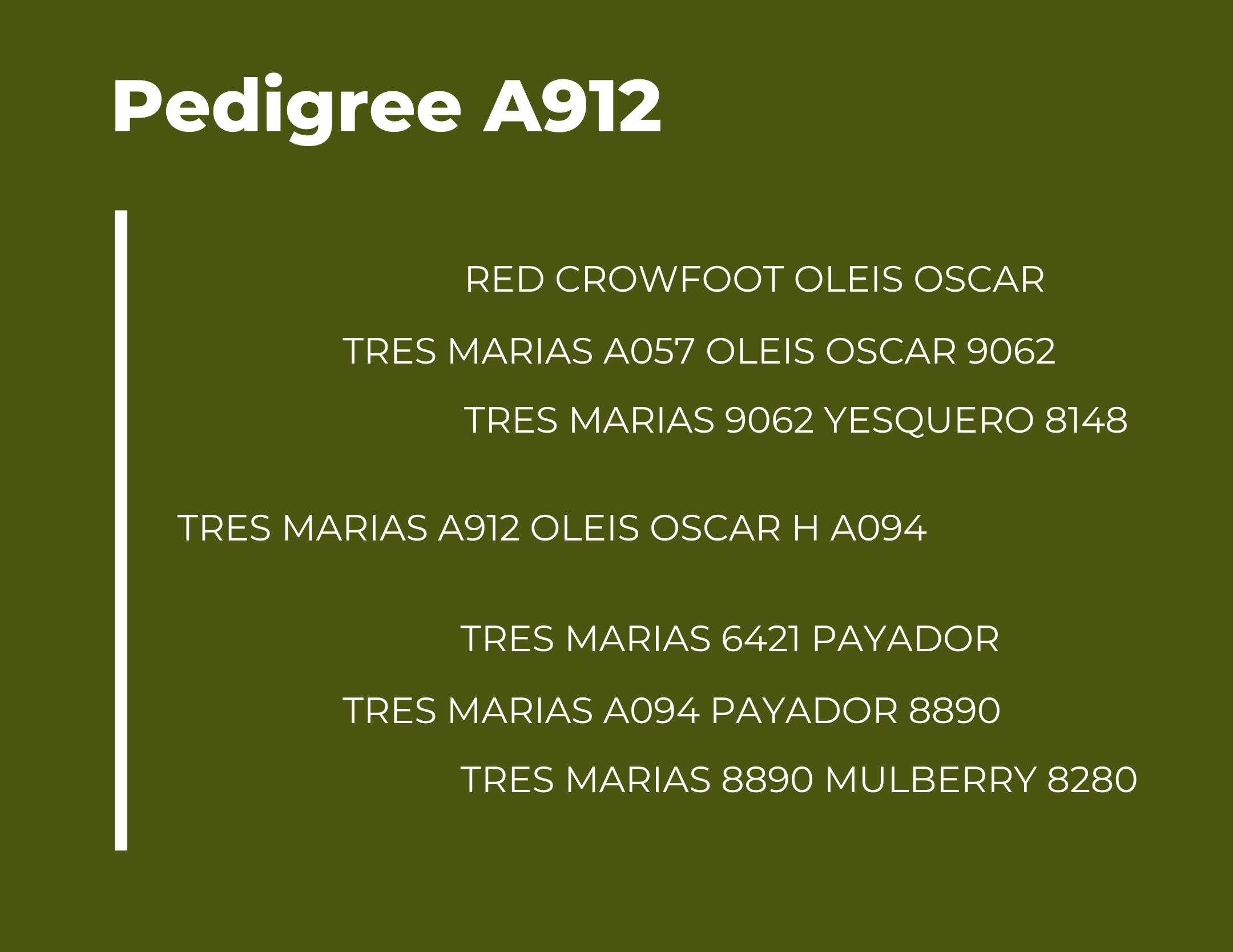 TM A912