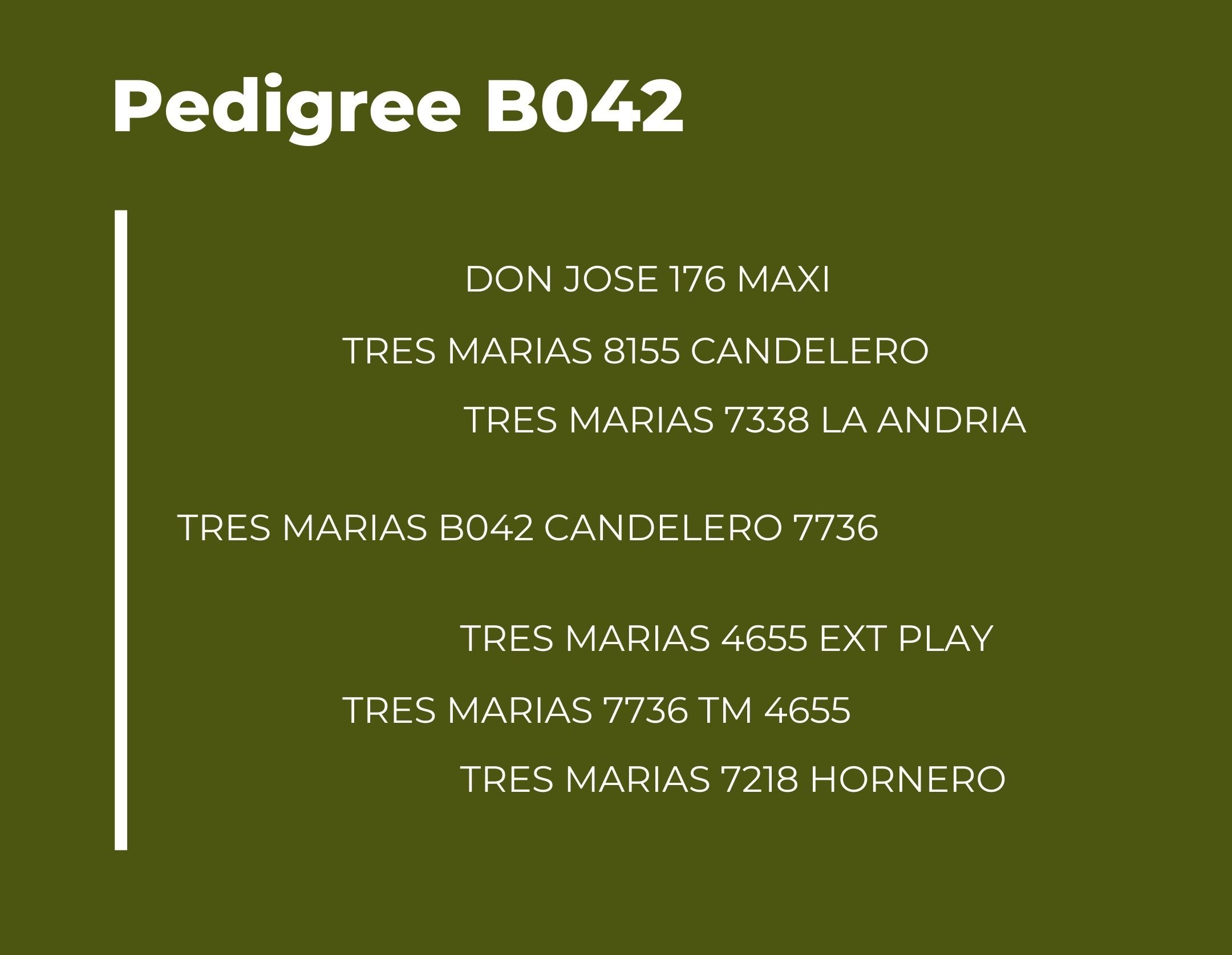 Catalogo Tres Marias Pedigree B042