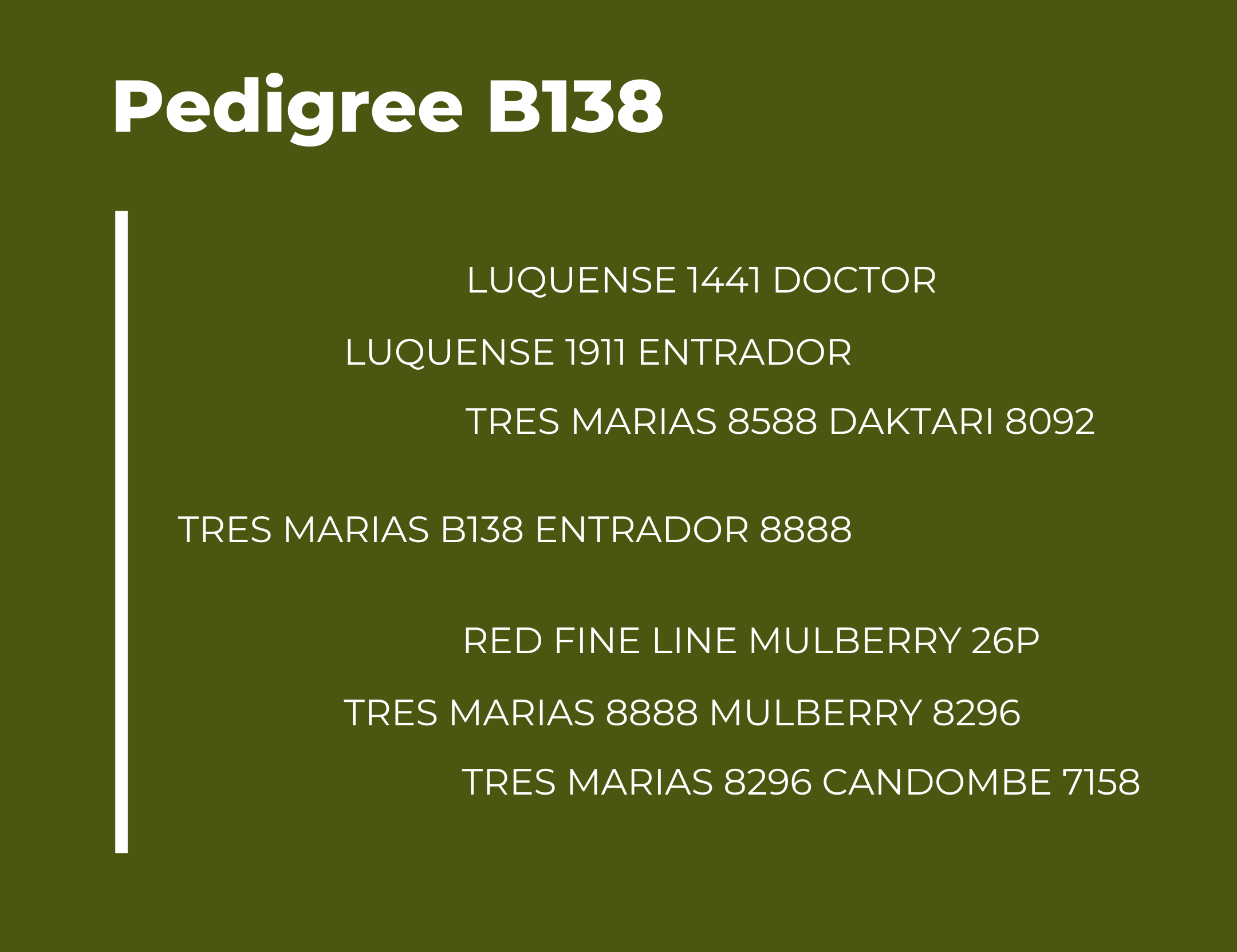TM B138