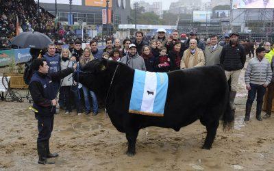 La Nación: Don Emilio se coronó bicampeón- Palermo 2018
