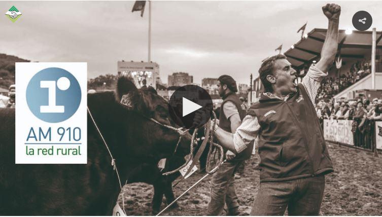 Entrevista a Francisco Gutierrez por AM 910- Palermo 2018